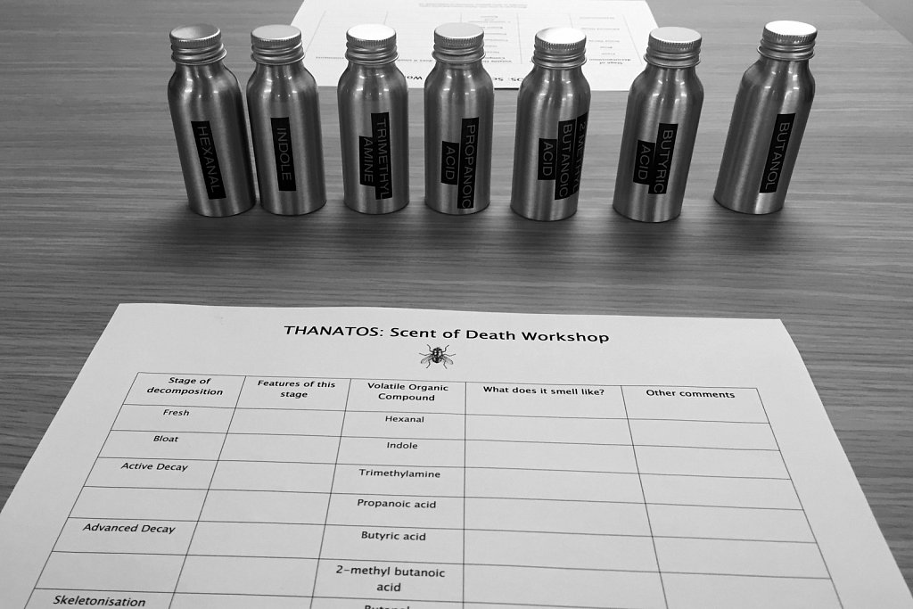 Scent of Death workshop